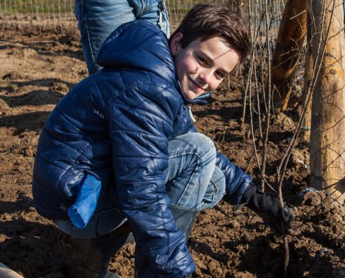 Jongen plant bos , foto Ivo Hutten