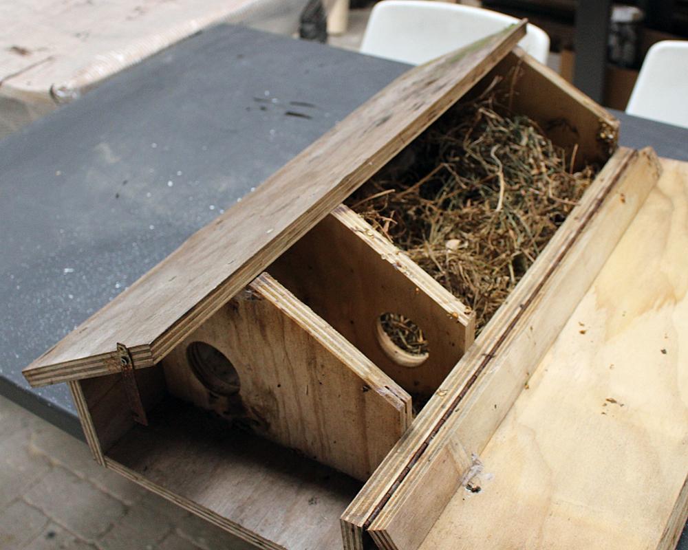 Nestkast voor steenuilen met ingenieuze ingang die het licht buiten houdt.