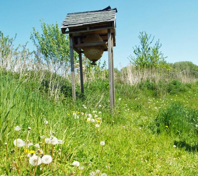 bijenkast-samenland